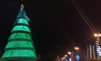 A árvore de 2009 vive até hoje na memória e na conta bancária dos florianopolitanos