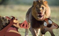 Rei Leão live action